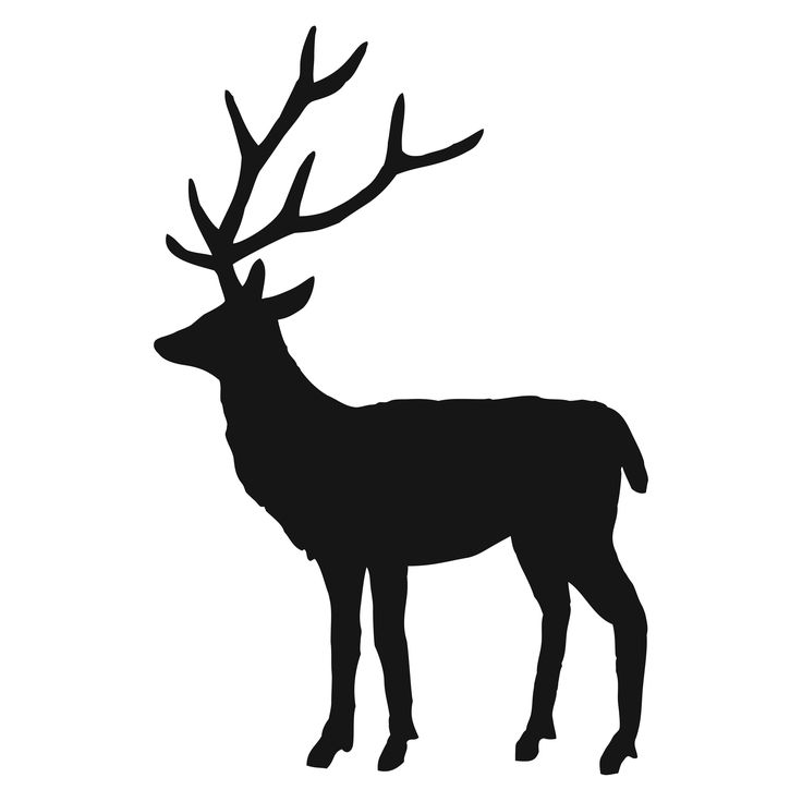 Clipart stag graphic royalty free library Free Stag Silhouette, Download Free Clip Art, Free Clip Art on ... graphic royalty free library
