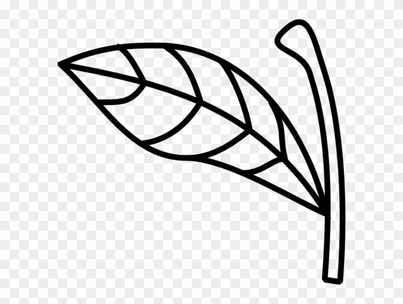 Clipart stem and leaf pattern black and white picture free library Free Apple Leaf And Stem Template | Jidileaf.co picture free library