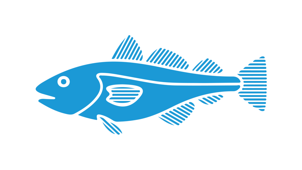 Two less fish in the sea clipart vector Local Inshore Fishing Information for Kennebunkport, Maine — Striper ... vector