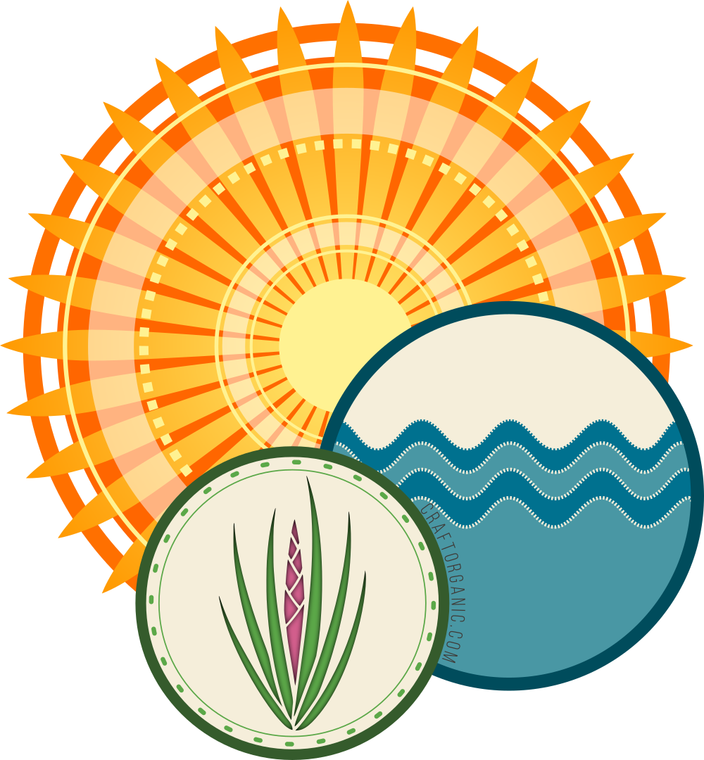Clipart sun soil air water picture royalty free library Tillandsia Care - Craft Organic picture royalty free library