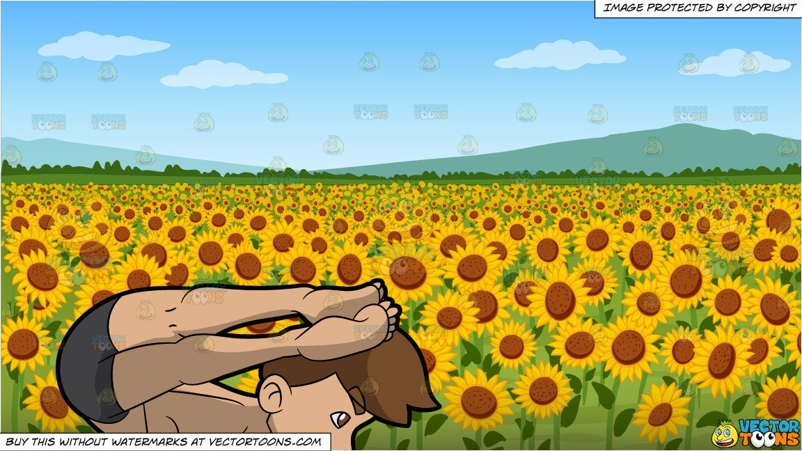 Clipart sunflower yoga tree blonde hair graphic transparent A Man Doing The One Legged Arm Balance Yoga Pose and A Field Of Sunflowers  Background graphic transparent