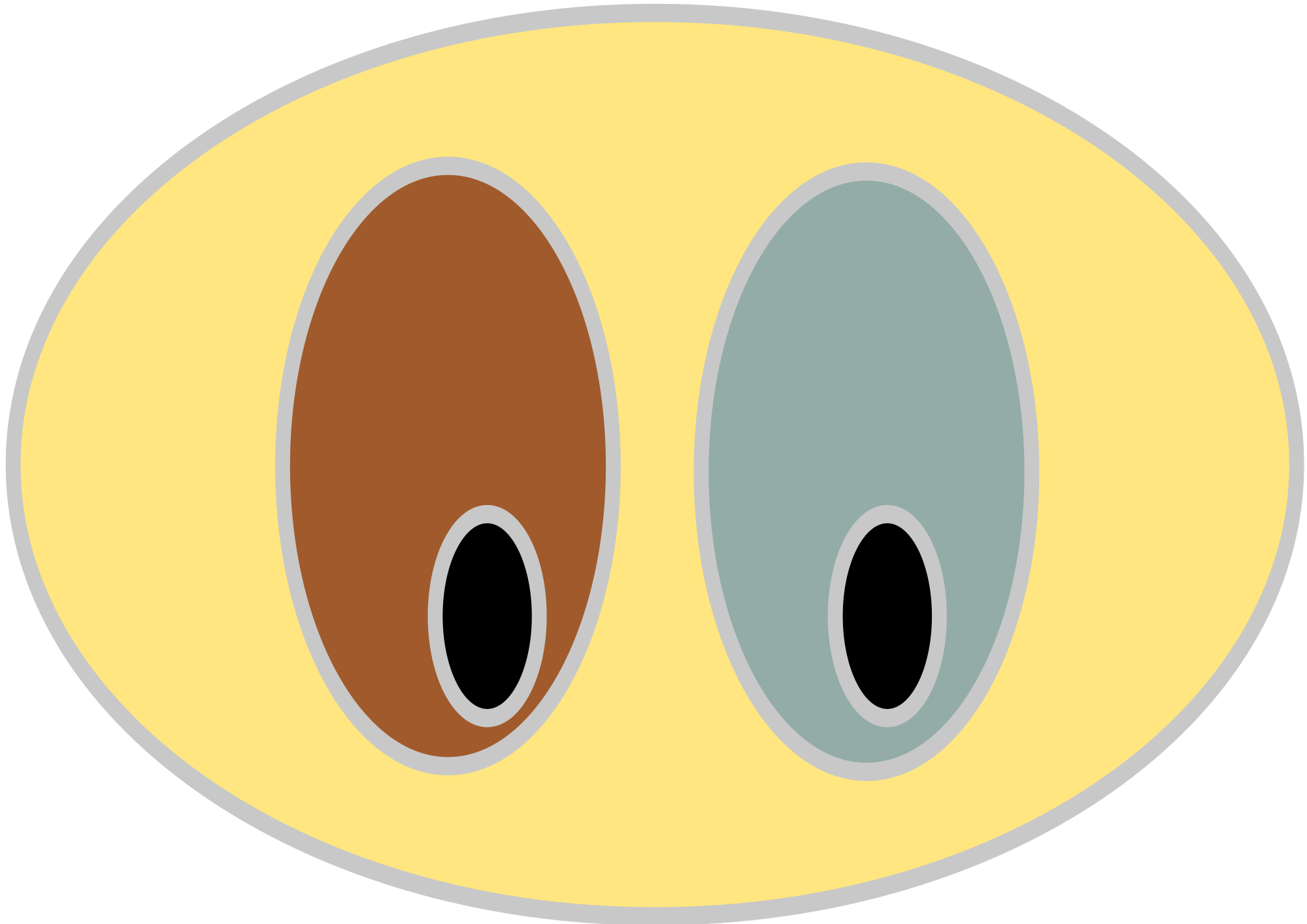 Clipart svg graphic File:Heterochromia iridium clipart.svg - Wikimedia Commons graphic