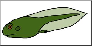 Clipart tadpole jpg library library Clip Art: Tadpole with Hind Legs Color I abcteach.com | abcteach jpg library library