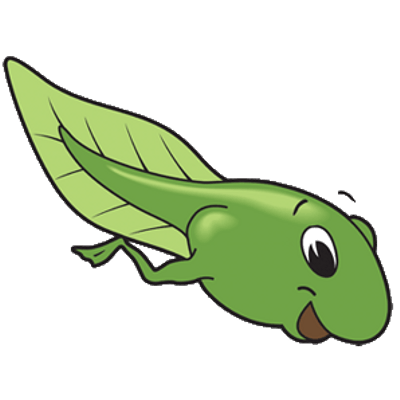 Tadpole clipart banner library download Tadpole Drawing | Free download best Tadpole Drawing on ClipArtMag.com banner library download
