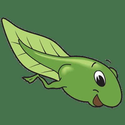 Clipart tadpole clip Tadpole Drawing | Free download best Tadpole Drawing on ClipArtMag.com clip