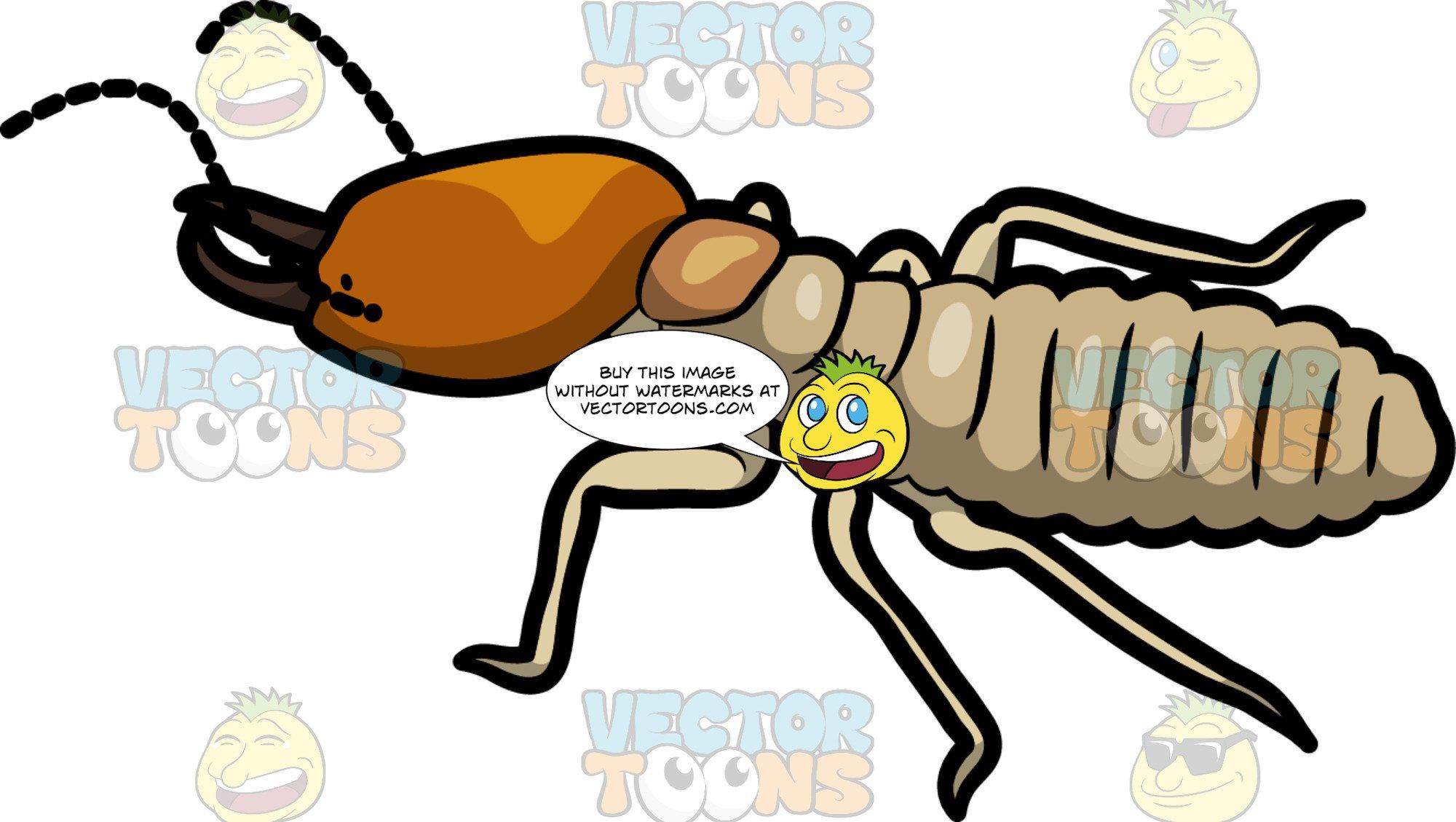 Clipart termites image download A Regular Termite image download
