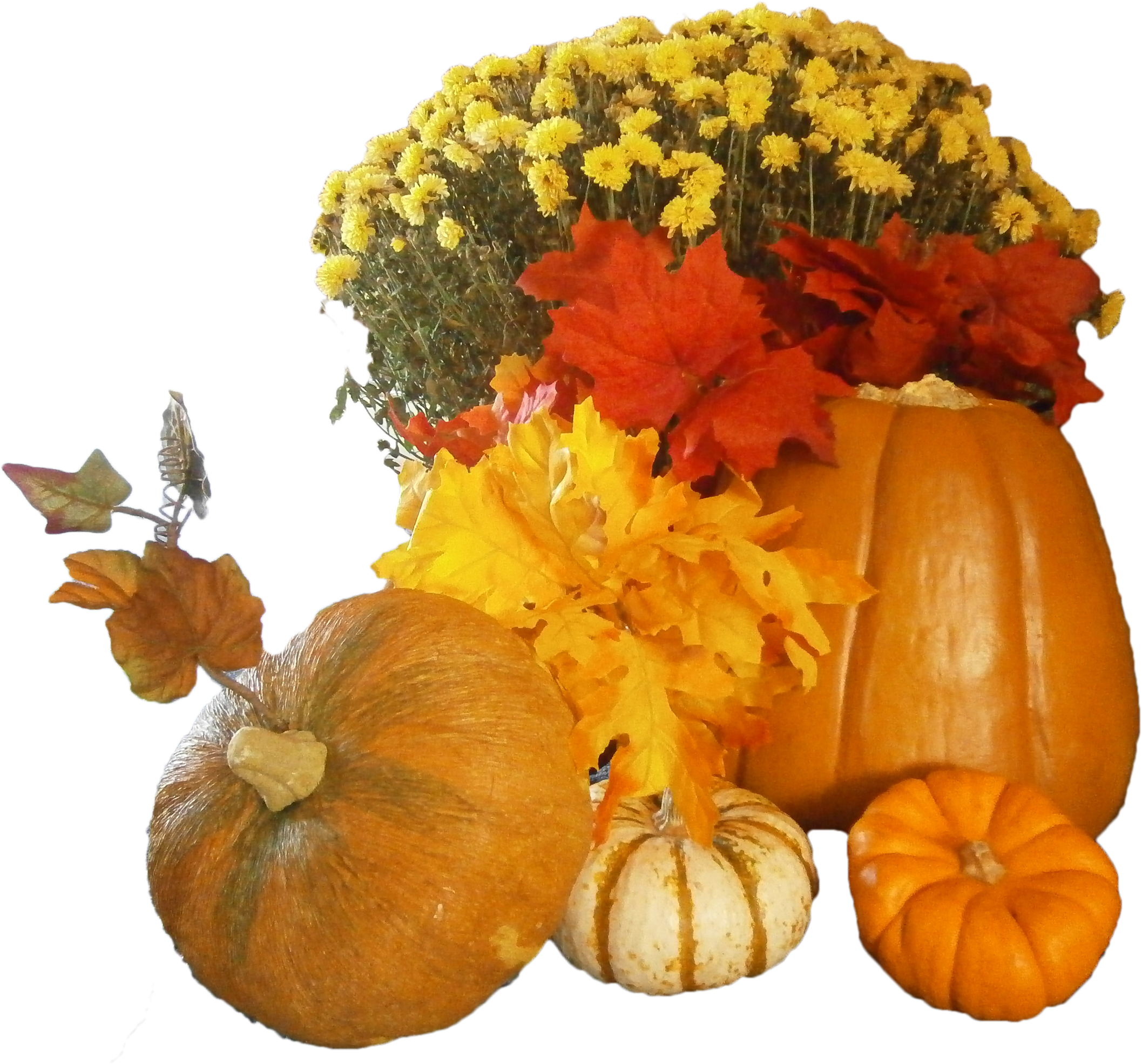 Free clipart thanksgiving day image royalty free library Free Thanksgiving Day PNG Images image royalty free library