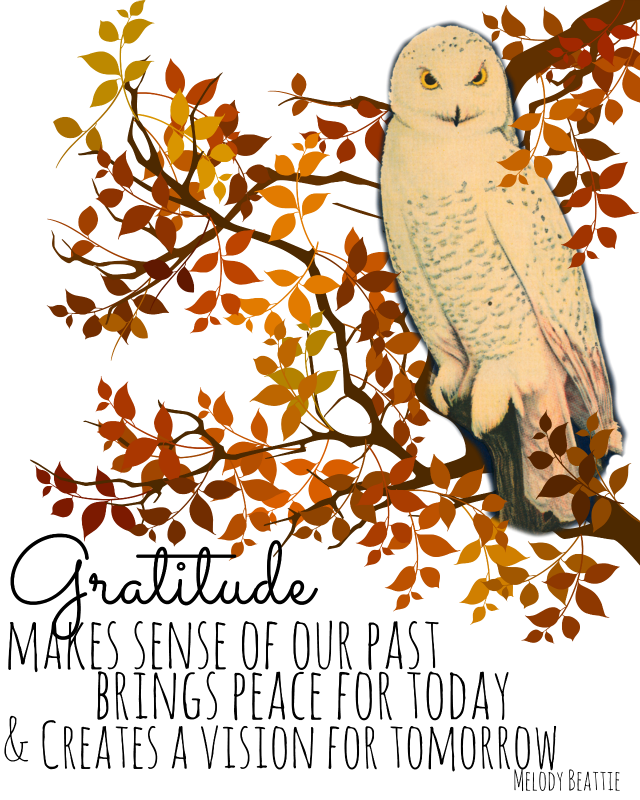 Clipart thanksgiving owls jpg download Thanksgiving Day - All Things Heart and Home jpg download