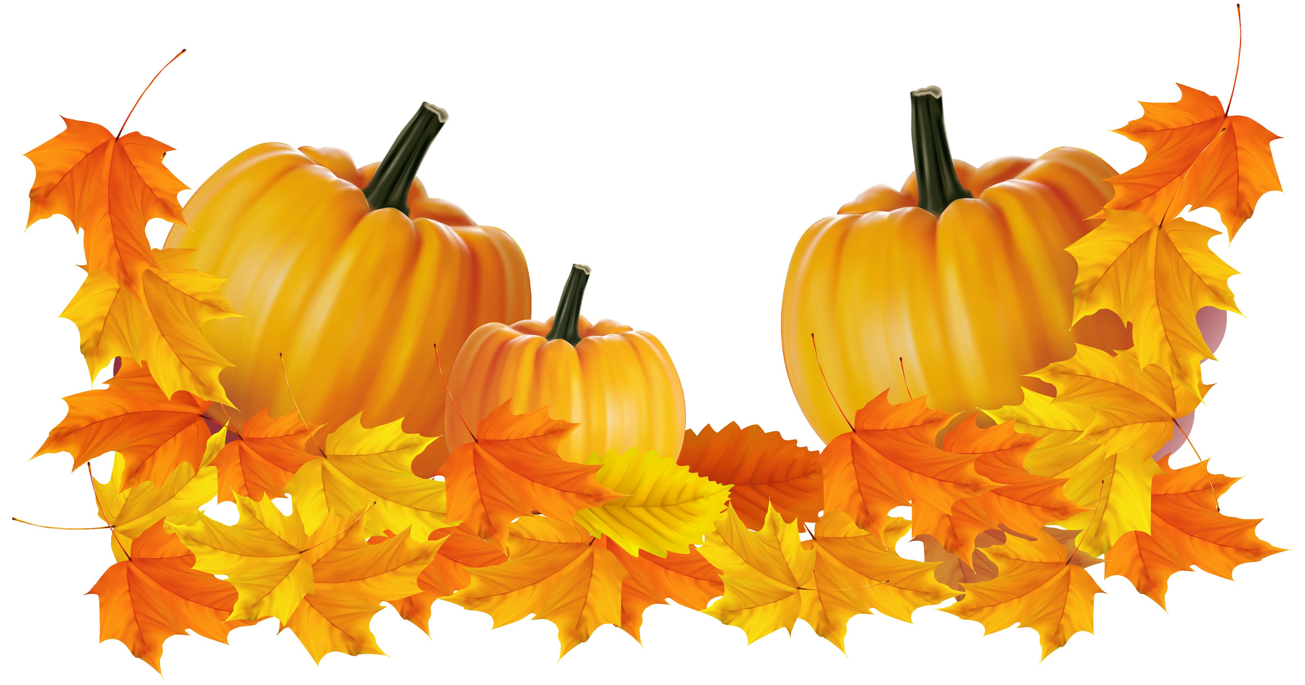 Pumpkin clipart black background vector library clipart images pumpkin small transparent - Clipground vector library