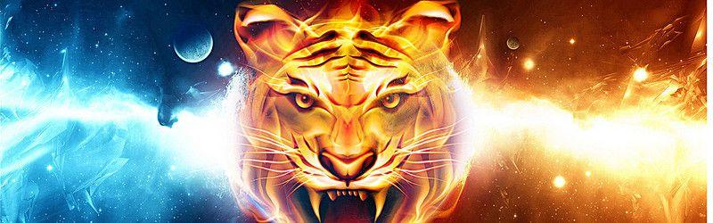 Clipart tiger design banner or bar clip transparent Cool Tiger Background | Wallpaper in 2019 | Background images, High ... clip transparent