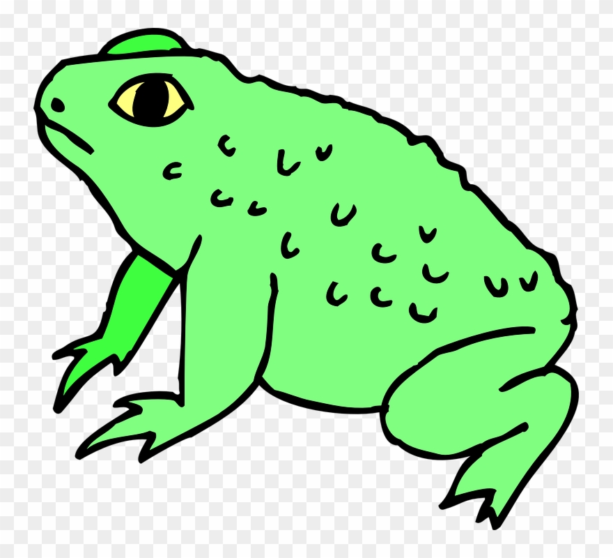 Toas clipart clipart transparent library Toad Clipart - Png Download (#1196916) - PinClipart clipart transparent library