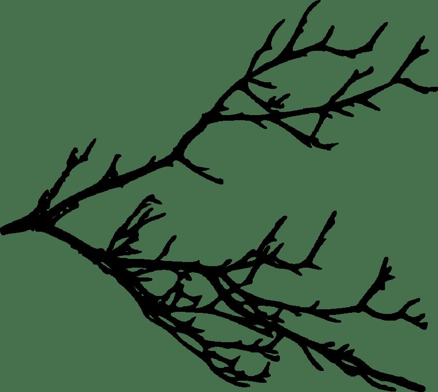 Clipart tree branch silhouette clip download tree branches silhouette png - Free PNG Images | TOPpng clip download
