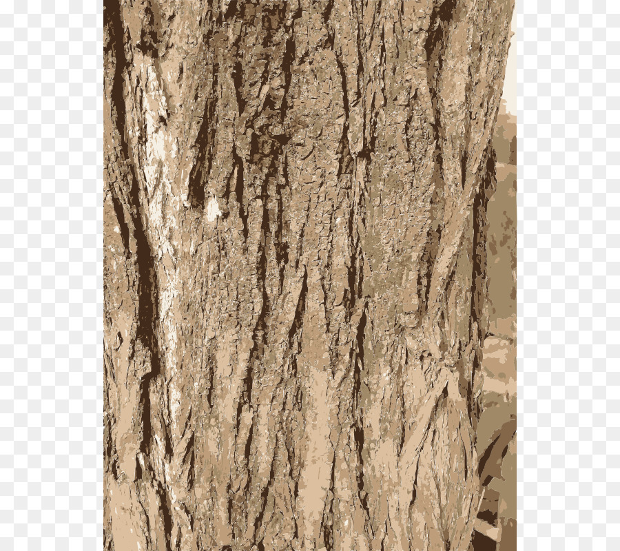 Clipart tree texture free download clip royalty free Wood Texture png download - 602*800 - Free Transparent Bark png ... clip royalty free