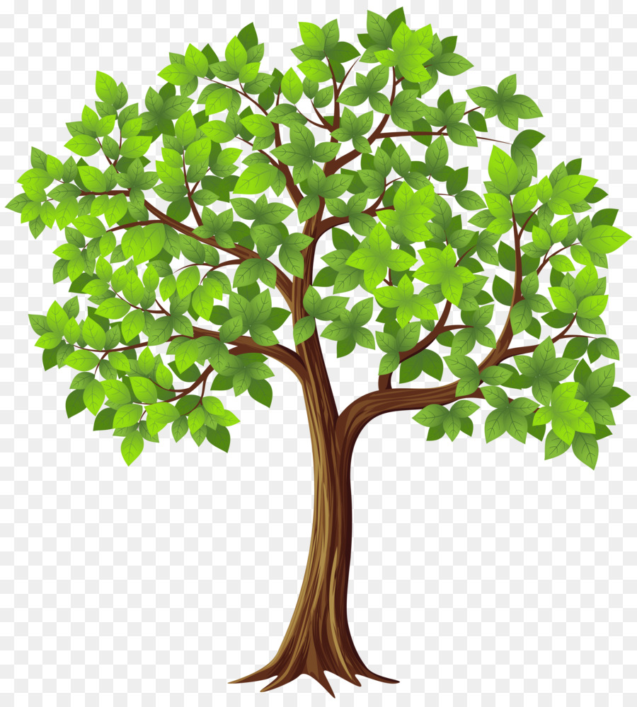 Clipart tree texture free download clip art library download Tree Texture mapping Alpha compositing Desktop Wallpaper - walnut ... clip art library download