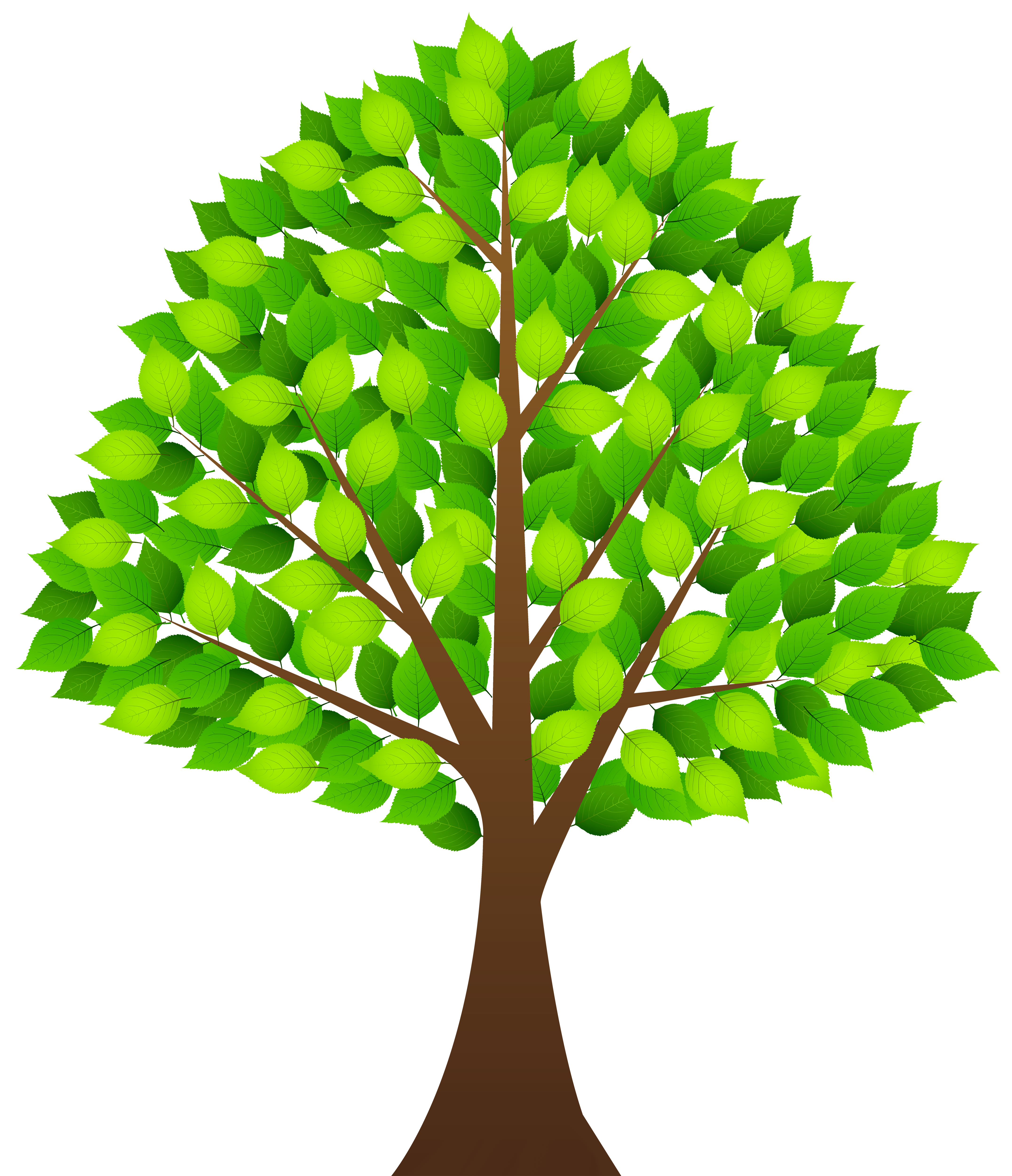 Tree clipart with transparent background image royalty free library Tree with Green Leaves Transparent PNG Clip Art Image | Gallery ... image royalty free library