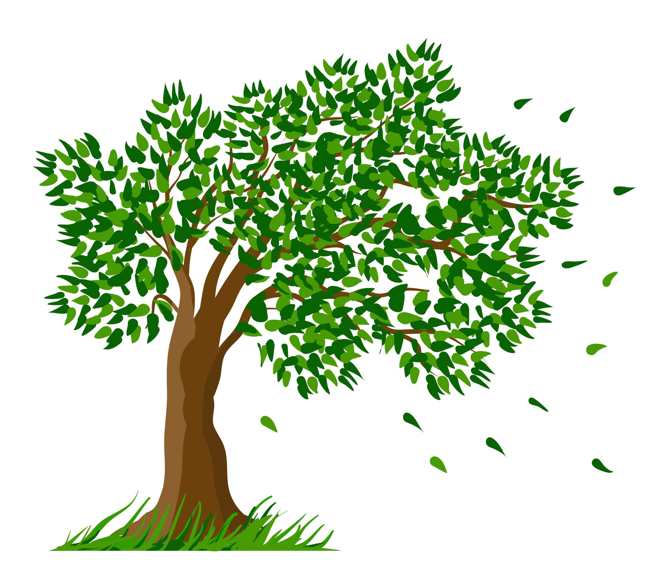 Transparent tree clipart graphic Tree Transparent Clipart Picture | Gallery Yopriceville - High ... graphic