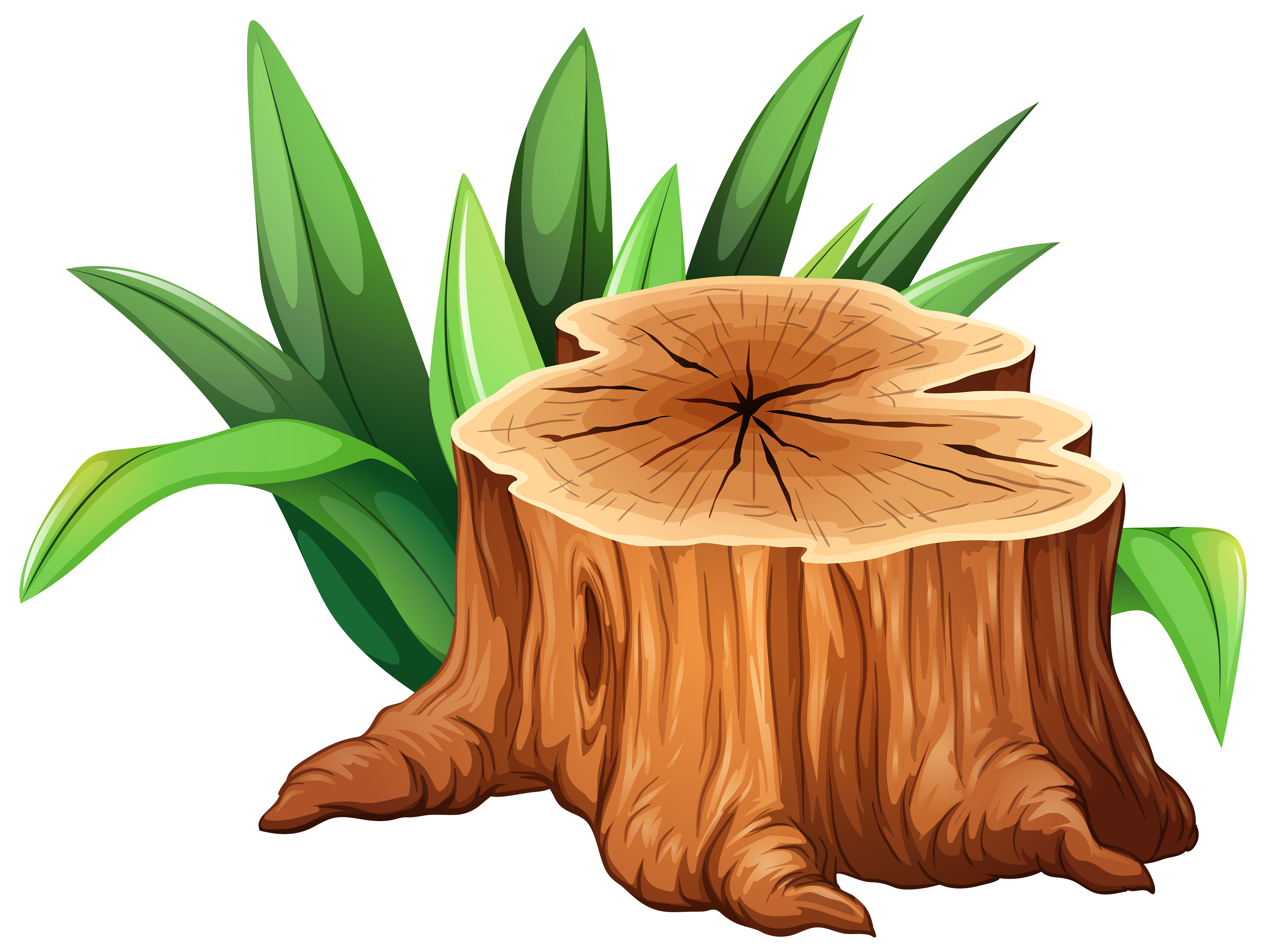 Tree trunk clipart free image royalty free 28+ Collection of Tree Trunk Clipart | High quality, free cliparts ... image royalty free