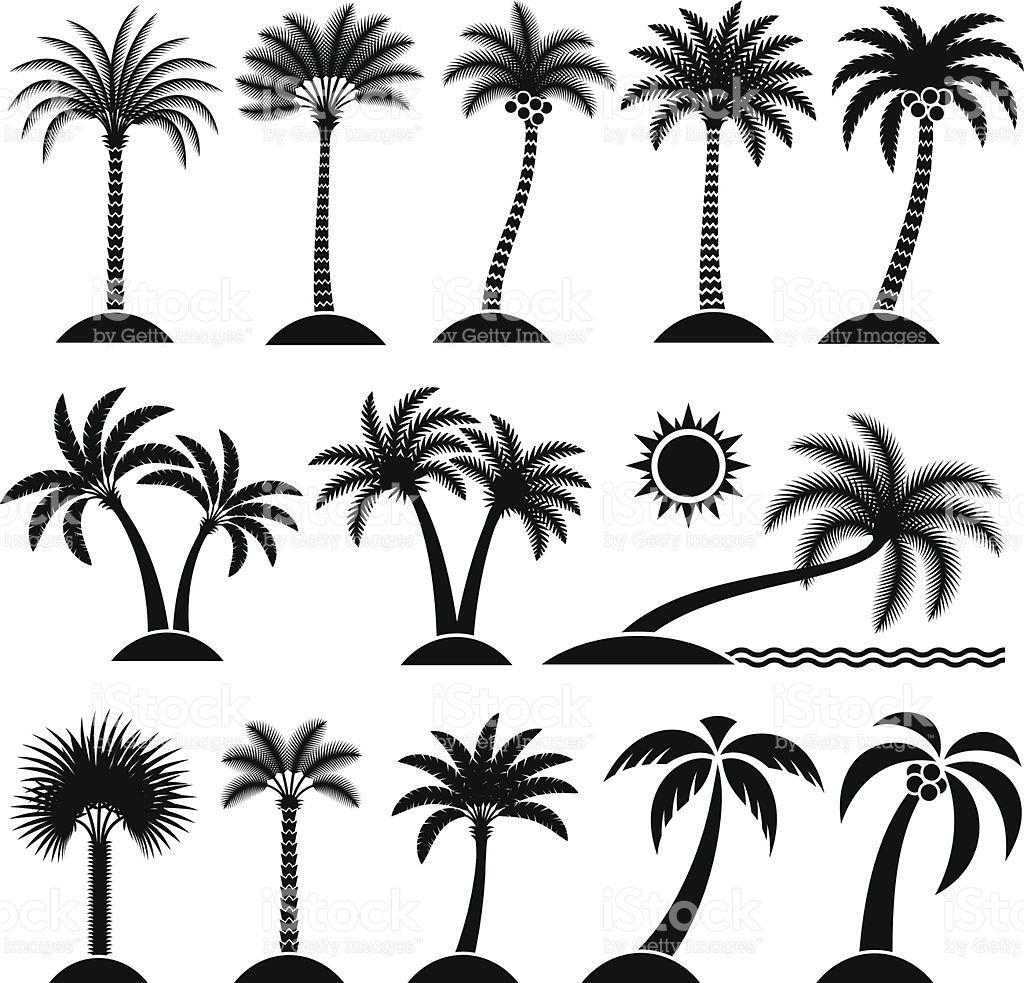 Clipart trees black and white free map jpg black and white stock Palm Tree Collection black and white royalty free vector interface ... jpg black and white stock