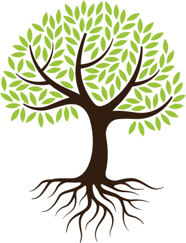 Clipart trees with roots transparent stock Free Tree Roots Cliparts, Download Free Clip Art, Free Clip Art on ... transparent stock