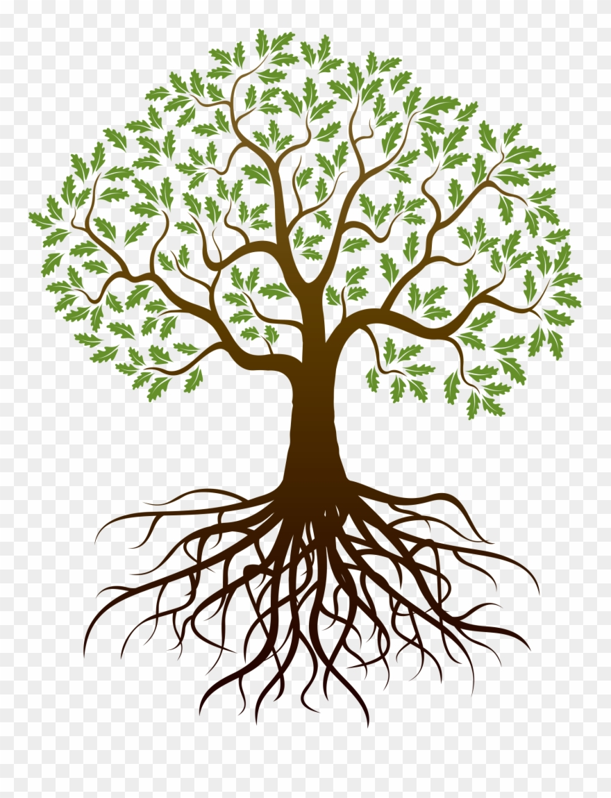 Clipart trees with roots svg free download Old Drawing Apple Tree - Tree With Roots Png Clipart (#2802 ... svg free download