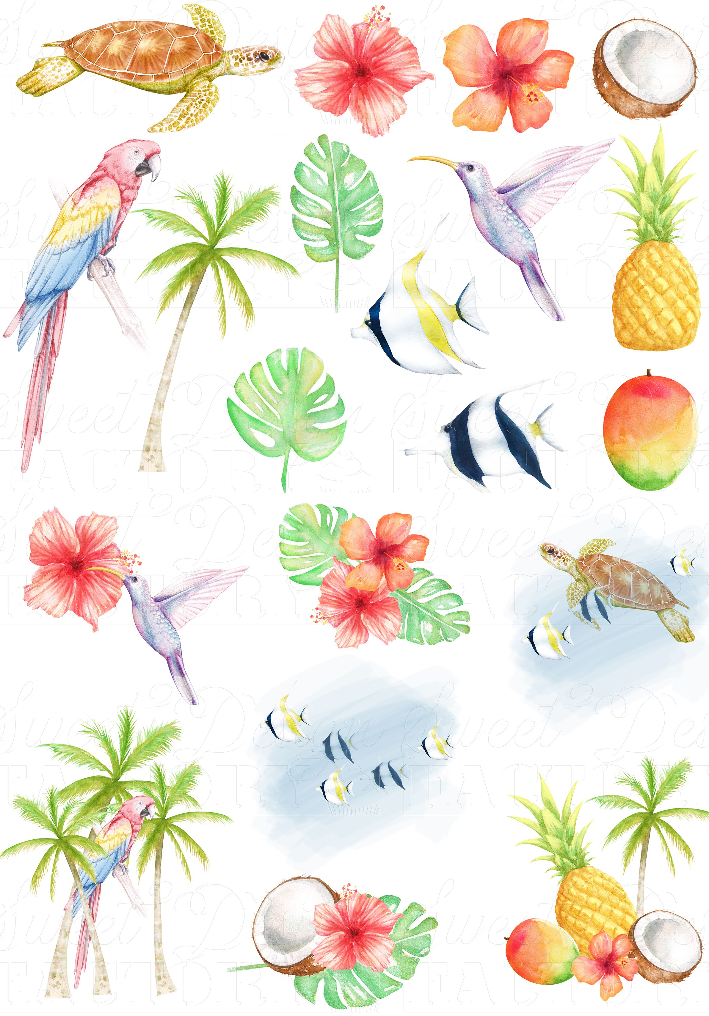 Tropical clipart/ hawaiian clipart/ turtle clipart/ summer clipart ... picture freeuse download