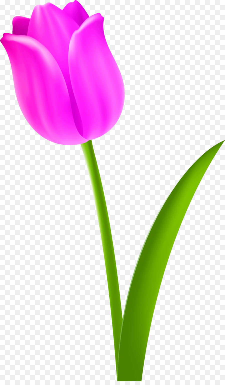 Clipart tulip vector black and white download Flowers Clipart Background clipart - Tulip, Graphics, Illustration ... vector black and white download