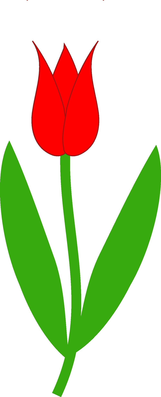 Flower roots clipart vector transparent download Free Tulip Clip Art Pictures - Clipartix vector transparent download