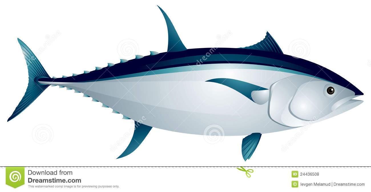 Clipart tuna clipart royalty free Tuna fish clipart 6 » Clipart Portal clipart royalty free