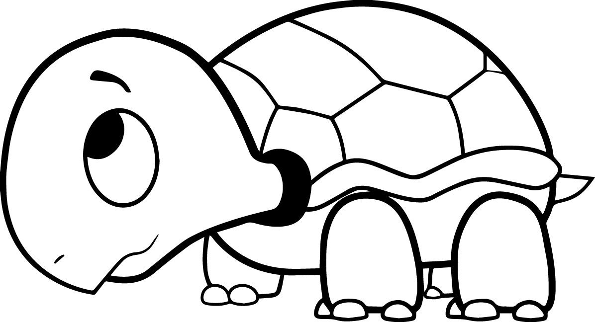 Library of free download turtle cloring png files Clipart ...