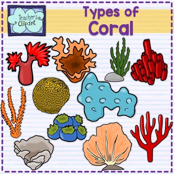 Clipart type banner transparent Types of Coral Clip art Summer aquatic life banner transparent