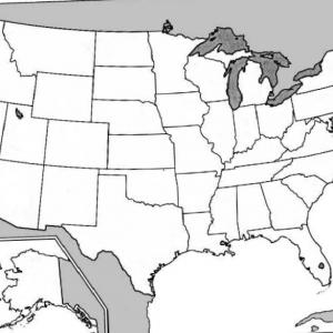 Clipart united states map outline clipart library stock Exclusive Clipart United States Map With States Layout | Vectory clipart library stock