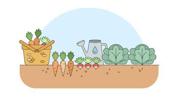 Clipart vegetable garden clip stock Vegetable Garden Free Vector Art - (14,807 Free Downloads) clip stock