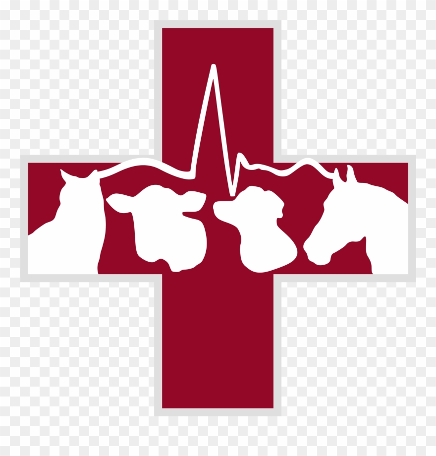 Clipart veterinarian clip download Png Free Stock Pemberton Veterinary Hospital Mixed - Large Animal ... clip download