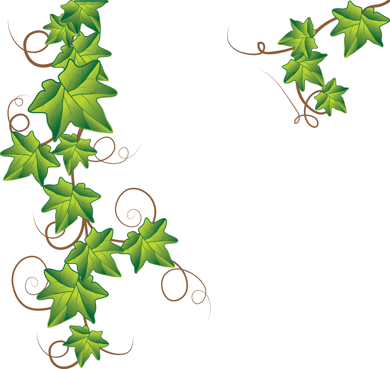 Vine corner clipart banner free library Free Vines Border, Download Free Clip Art, Free Clip Art on Clipart ... banner free library