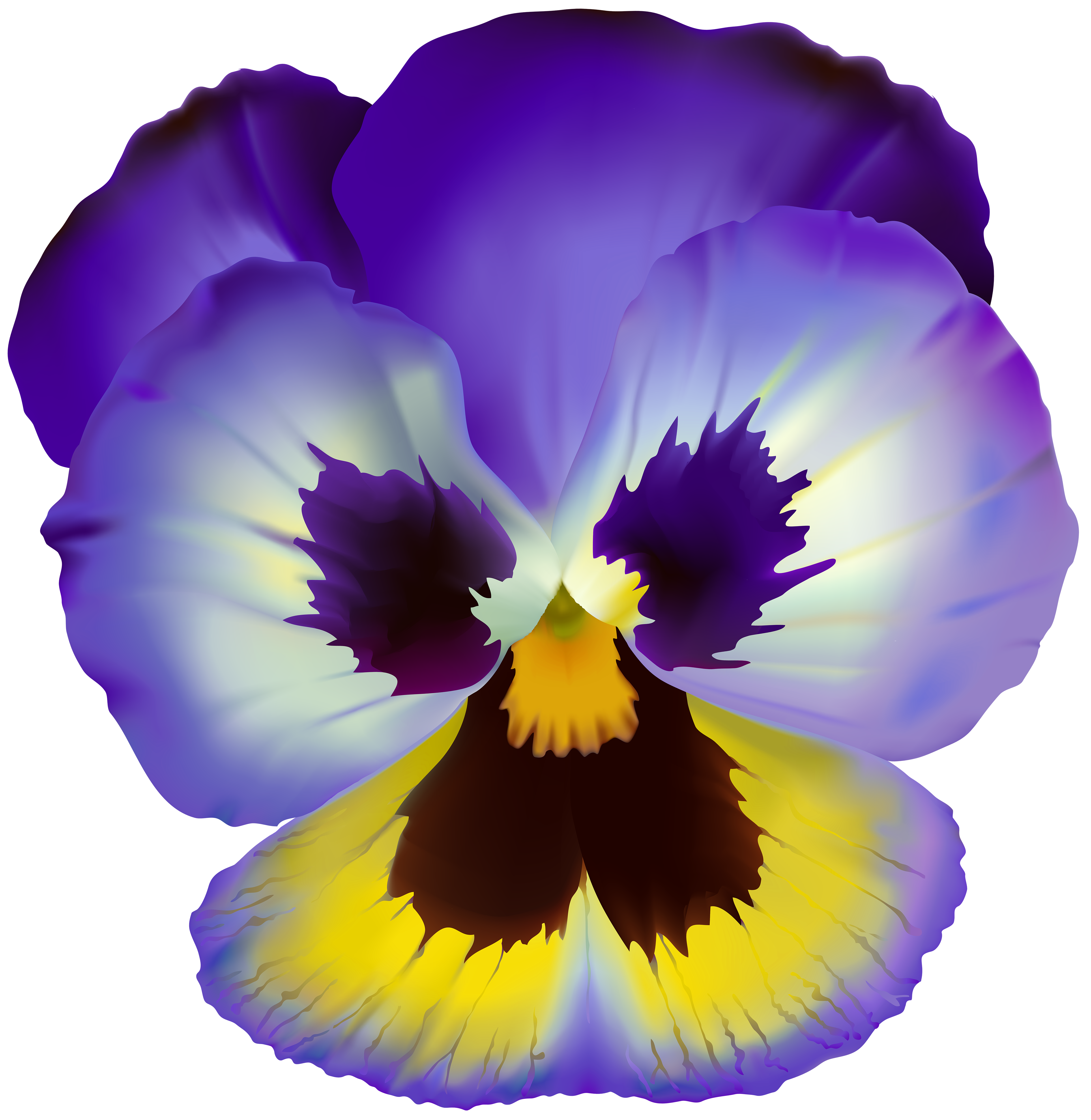Pansy flower clipart clipart transparent library Violet Flower Transparent Clip Art | Gallery Yopriceville - High ... clipart transparent library