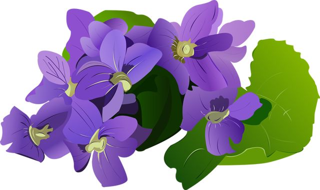 Clipart violets graphic library Free Violet Flower Cliparts, Download Free Clip Art, Free Clip Art ... graphic library