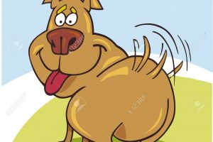 Clipart wagging picture freeuse download Wag clipart 4 » Clipart Station picture freeuse download