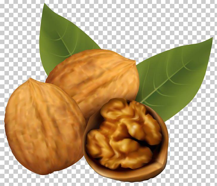 Clipart walnut jpg library Walnut And Coffee Cake Nucule PNG, Clipart, Clipart, Clip Art ... jpg library