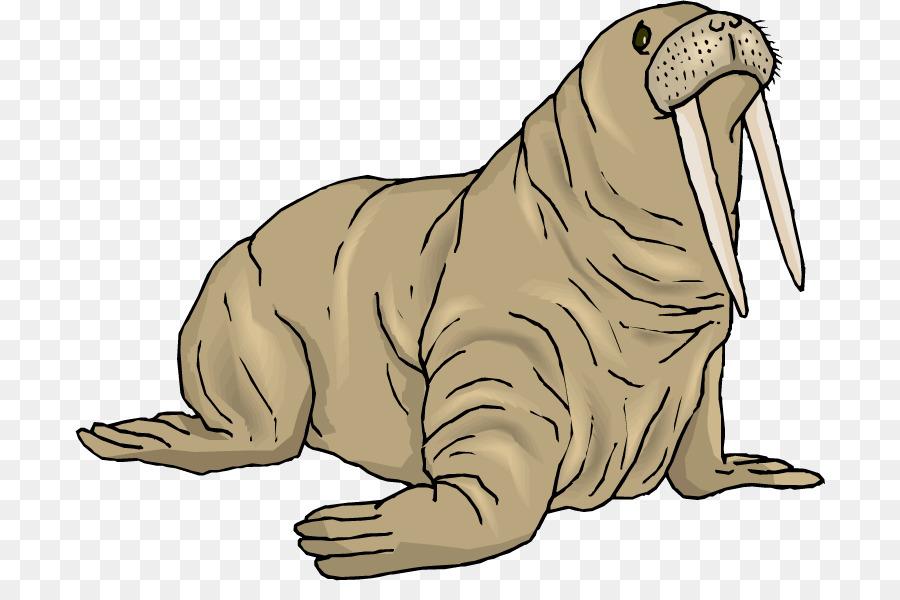 Clipart walrus png Animal Cartoon clipart - Walrus, Seals, Wildlife, transparent clip art png