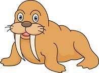 Clipart walrus clip art stock Search Results for walrus clipart - Clip Art - Pictures - Graphics ... clip art stock