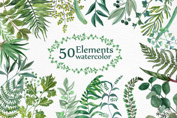 Clipart watercolor vector download Watercolor Ferns Clipart WATERCOLOR CLIP ART Branches clipart Greenery  clipart vector download