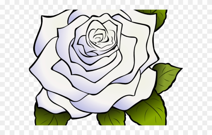 Clipart white rose black and white download White Rose Clipart Animated - Clipart White Rose Transparent ... black and white download