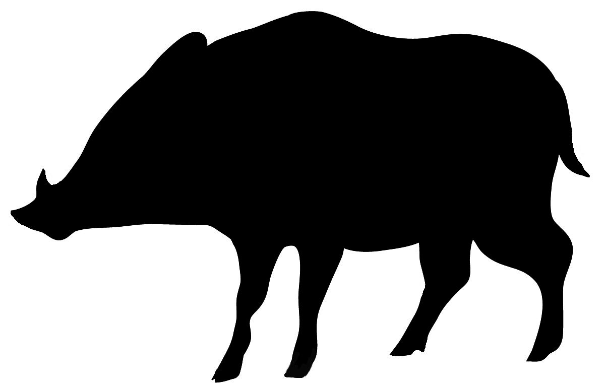 Clipart wild boar graphic royalty free Wild boar silhouette in black. | Shaman! | Wild boar, Boar hunting ... graphic royalty free