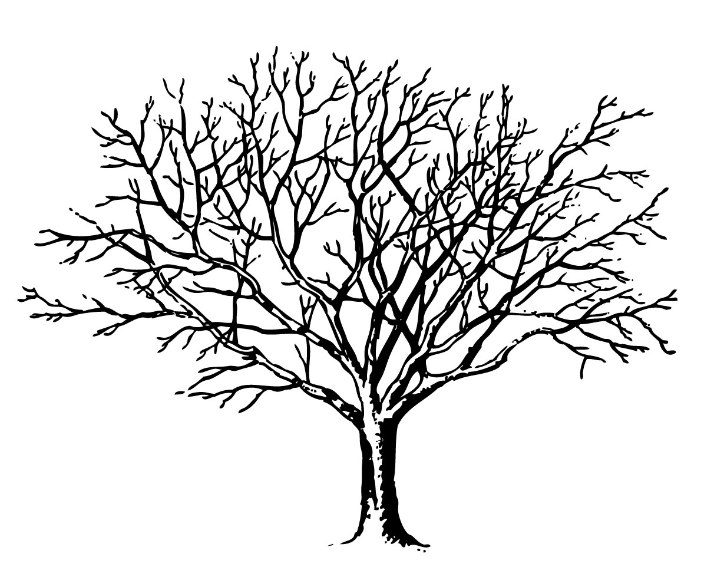 Tree in winter clipart silhouette