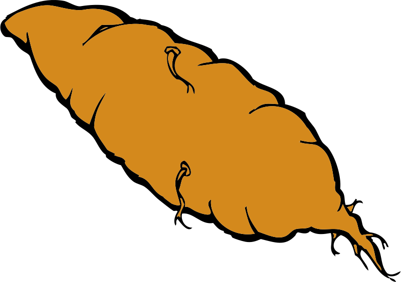 Clipart yam png free library Free Clipart: Yam | johnny_automatic png free library