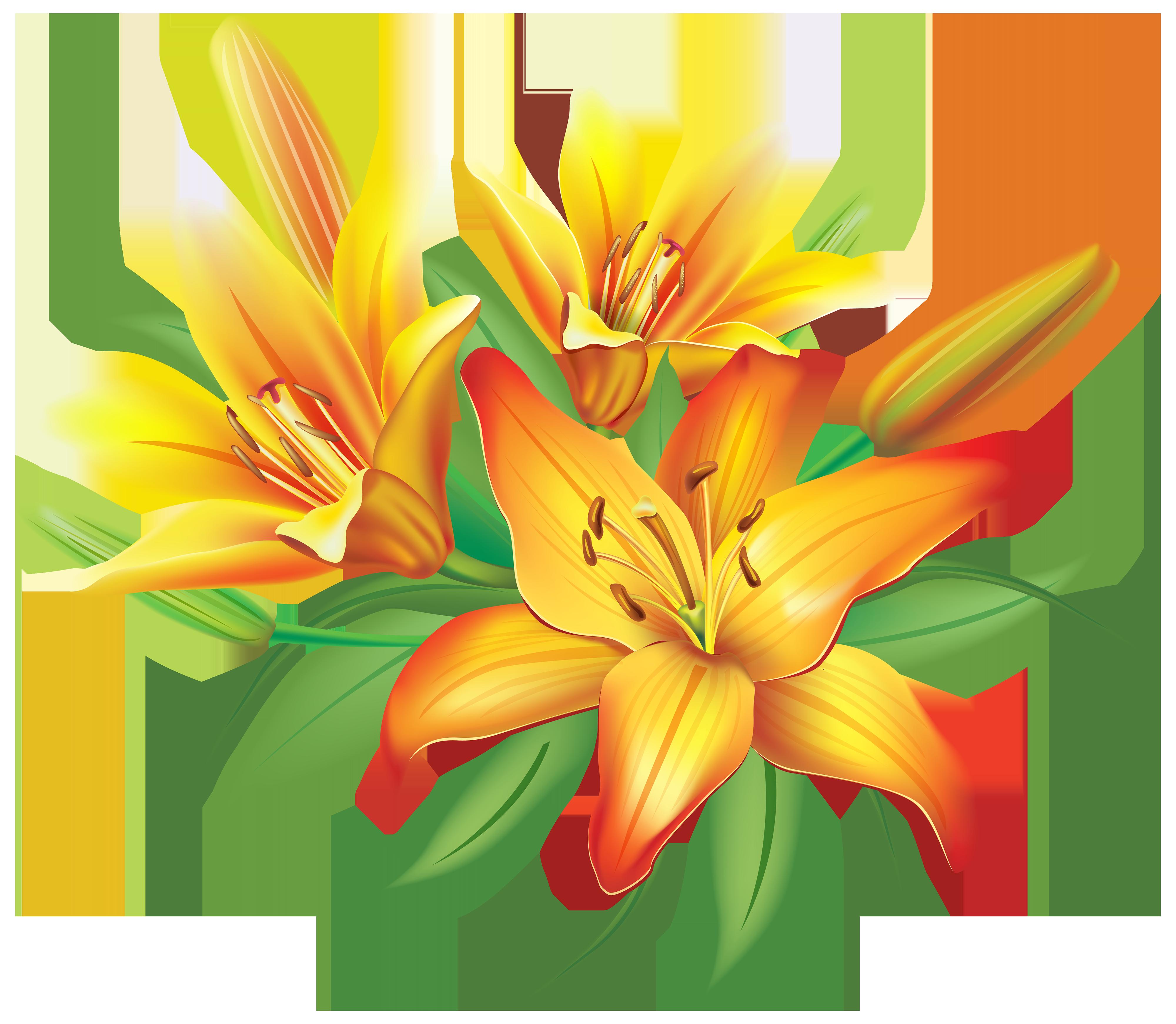 Clipart yellow flower pumpkin svg transparent Orange lily clipart - Clipground svg transparent