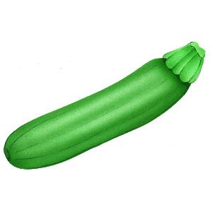 Clipart zucchini png transparent Zucchini Clipart   Free Download Clip Art   Free Clip Art   on ... png transparent