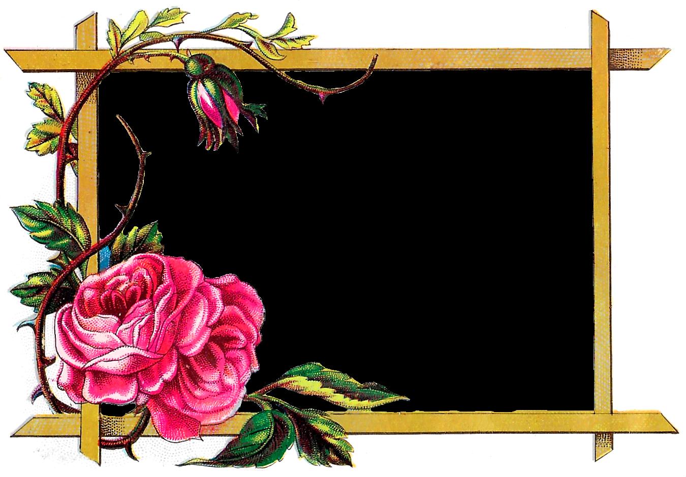 Clipart-flower borders and frames image download Antique Images: Floral Frame Digital Download Pink Rose Border ... image download