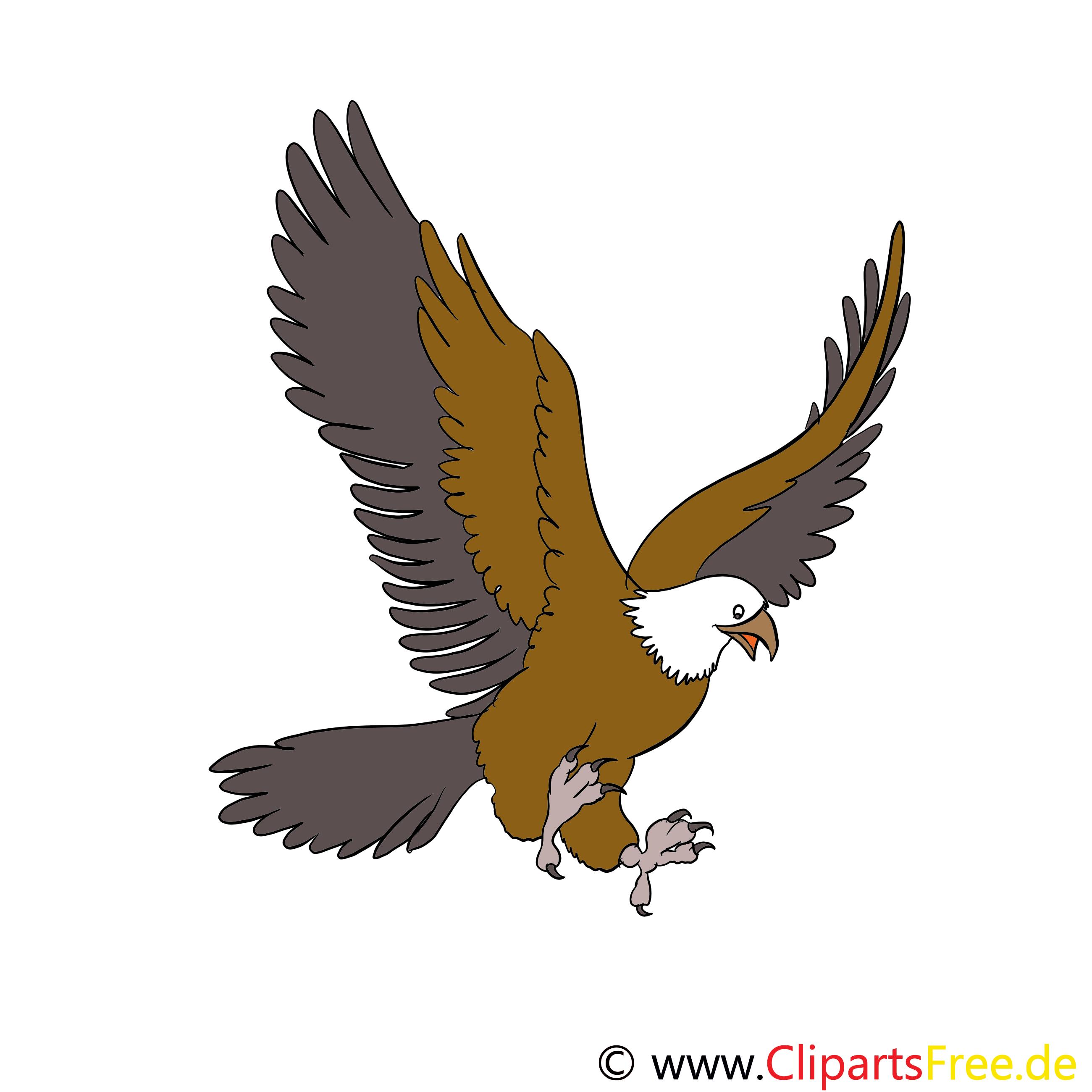 Cliparts adler kostenlos clip free Tiere Bilder, Cliparts, Cartoons, Grafiken, Illustrationen, Gifs ... clip free