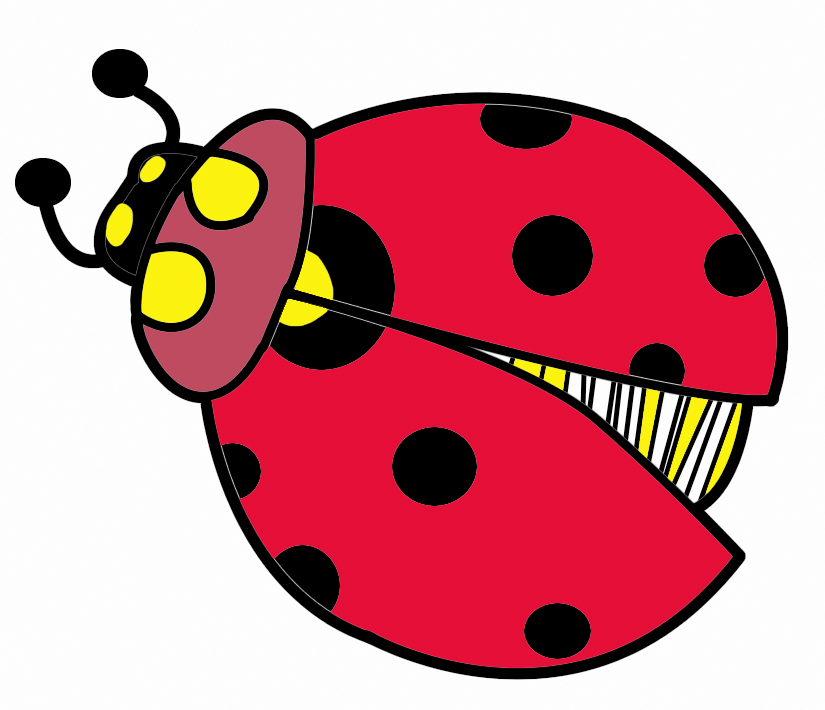 Cliparts insect clip library stock Free Free Bug Clipart, Download Free Clip Art, Free Clip Art on ... clip library stock